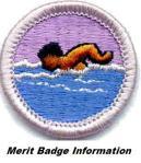 swimming m b